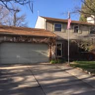 Sweet, compliant 7 yr old golden with great yard in beautiful Boulder County...AUG 19-Sept 2!