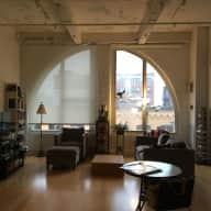 Two lovely cats in a beautiful South Boston artist's loft