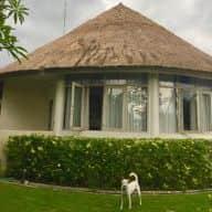 Bali Menagerie