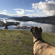 Summer vacation in Kelowna BC