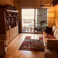 Friendly Greyhound and Great Apartment in Central Barcelona for the Holidays