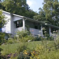 Cat sitter in Country home convenient to wonderful Asheville, NC.