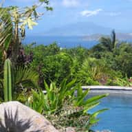 Dog sitter needed for Dakota on the beautiful Caribbean island of Nevis