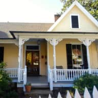 Stay in my lovely 1892 house, walkable to downtown, and look after my charming little dogs!