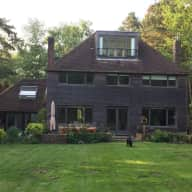 Three dogs and a contemporary house in the heart of the Ashdown Forest