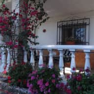 House sitter needed for rural Andalucia