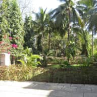 Goa, India. Experienced and responsible sitters needed for our dog Cyan and our beautiful villa.
