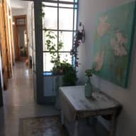Cat lover for great Buenos Aires apartment