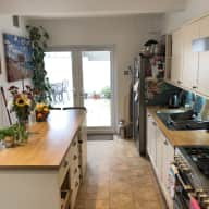 Quiet house and pet sit on the South Coast