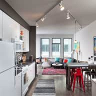 Cozy city apartment and loving pup!