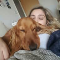 URGENT Puppy Sitter Wanted