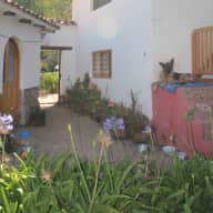 Pet/House sitter required for 2 German Shepherds in Sacred Valley Peru  - ASAP