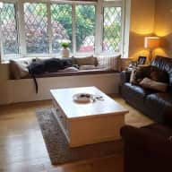 London Suburb Family home with our  lovely Lucher and Greyhound  - easy access to central London