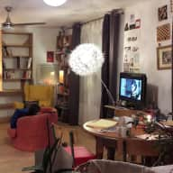 Lovely apartment and cats in central Montpellier, South of France, 20 Feb to 3 March 2018