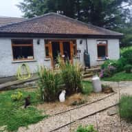 Urgently Required Catsitter/s for our Feline Family & 2 Hens in Co.Wicklow, Ireland February 2018