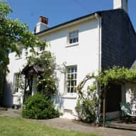 Small dog and house sitter needed in leafy Surrey, UK