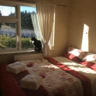 Calling Dublin Cat Sitters!