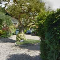 Dog sitter required to look after house in country village, fish pond (low maintenance in winter)  and two large dogs