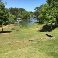 Three Cats Looking For A Friend On Beautiful Lake Lanier In Atlanta USA