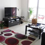 Apartment and cat sitter in Lyon for 3 weeks