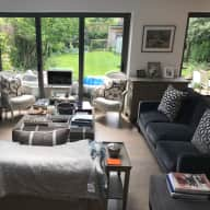 Lovely puppy and a cat living in wonderful home in  Barnes, SW13 LONDON.
