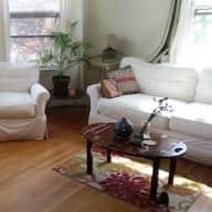 Cat sitter for lovely 1-bedroom apartment