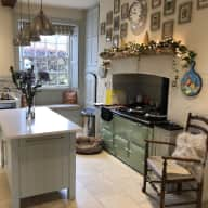 Lovely house sitters wanted for two small dogs in Rutland