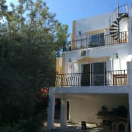 Pet sitter wanted Ozankoy, North Cyprus