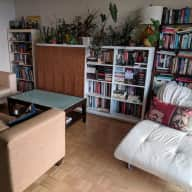 kitty-sitter needed in lovely West Vancouver apt.