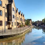 Christmas & New Year - Pet sitter needed for cat, in central London near St Katherine's Dock (Tower hill)