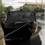 Beauty Boat and Dog Springfield Marina