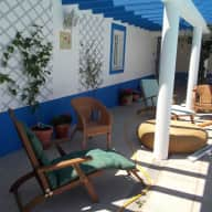 Lovely cat and comfortable home to care for in rural Portugal