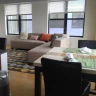Cat Lover Wanted for Luxorious High Rise Cat Sit in Chicago, Illinois