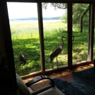 Beautiful home in a Nature Preserve in sunny Florida.  No pets