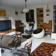 cat sitter for 3 laid back cats in quiet central london flat with garden