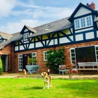 Dog sitter required in Chester.