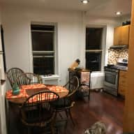 Petsitter for 2 mini pinchers and1 cat for 7 days Da Bronx! Near Yankee Stadium!
