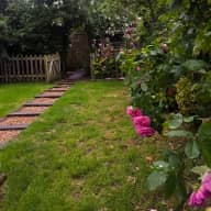 WANTED - House Sitter Wanted from 30th July - 13th August 2018, North London