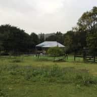 Beautiful acreage near Byron Bay