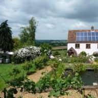 Rural South Somerset UK. Dog Stay