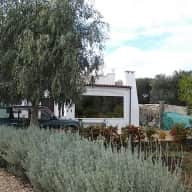 Pet and House sitting in Puglia, southern Italy