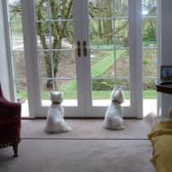 Cotswold vicarage with 2 westies