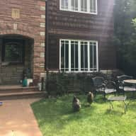 Lovely home near mountain park and walking distance to downtown. Needing a very clean and mindful house and pet sitter.