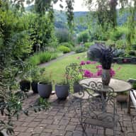 Cat and garden lover needed for small house in country side near Basle, Switzerland