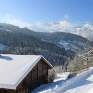 Dog and house sitter for our chalet near the pretty Alpine village of Manigod, 30 minutes from Annecy