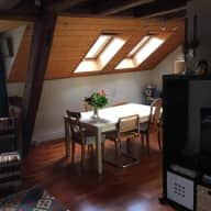 Beautiful attic flat in Neuchatel (Switzerland) with 2 giant cats