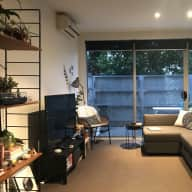 One bedroom apt in Collingwood with Scully the cat