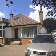 A beautiful GSP and a house in central Harrogate, located in God's county.