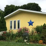 Yellow House with the Blue Star and two shy [crazy] cats