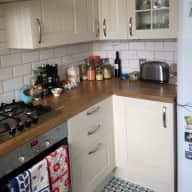 Cat & flat sitter wanted in Stoke Newington, London N16